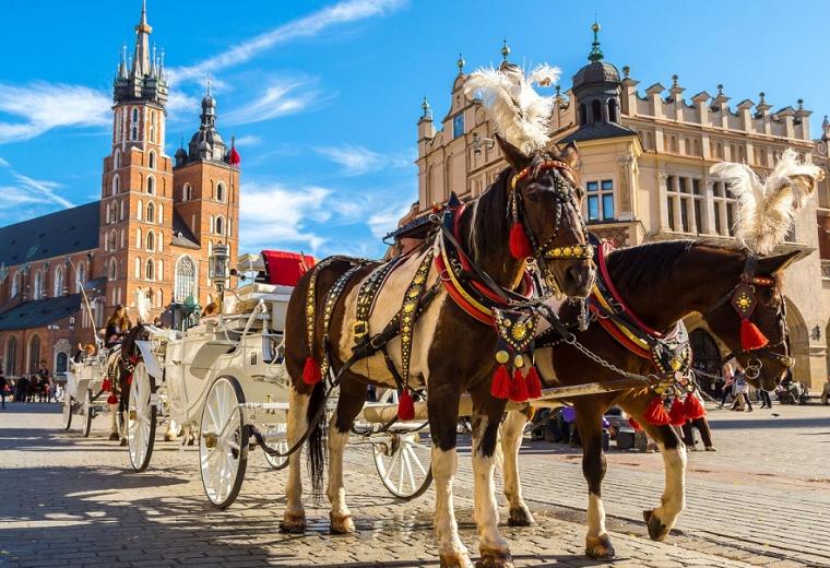Обзорная пешеходная  экскурсия  по Кракову