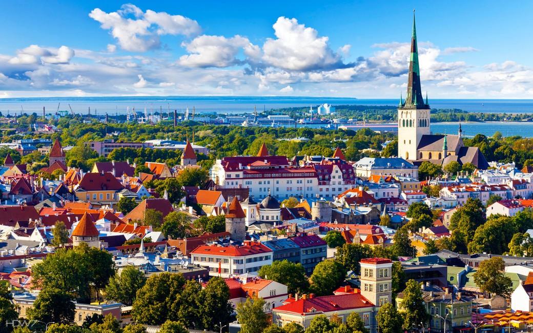 Автобусная экскурсия по Таллину